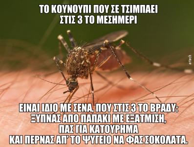 Κουνούπι στις 3